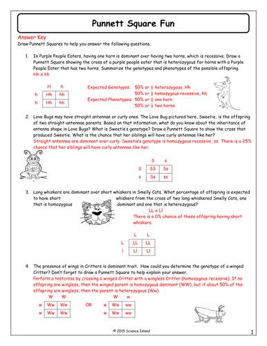 Punnett Square Generator Worksheet Answer Key - archnew